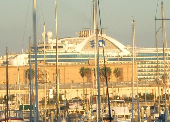 View Of Princess Cruise Ship From Room DoubleTree Hilton Hotel - San pedro harbor cruise ship schedule