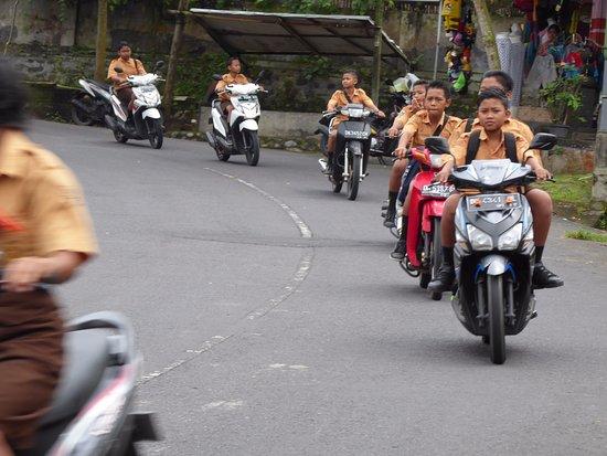 """Aditya Homestay: Ab 14 Jahren ist das Motorrad Pflicht .... Helme werden """"nur in der Stadt"""" verlangt."""