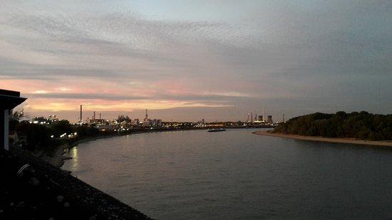 Hotel am Rhein: Ausblick zum Rhein nordwärts