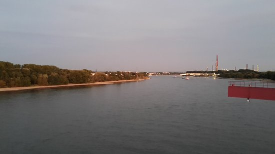 Hotel am Rhein: Ausblick zum Rhein südwärts