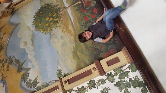Casa San Rafael: 20161104_101517_large.jpg