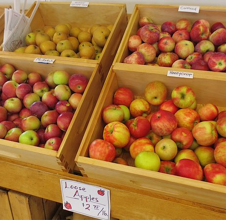 Shelburne Falls, MA: Apples galore and always a beautiful view