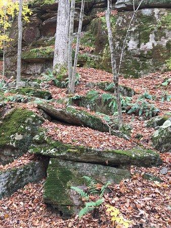 Hollow Rock Nature Park Address