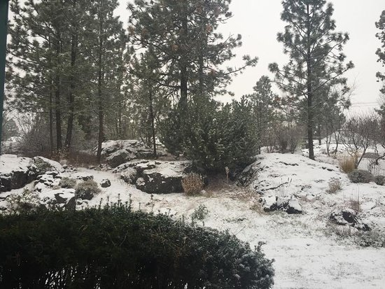South Hill: Snow in winter