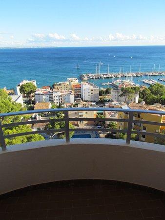 Blue Bay Hotel: вид из окошка