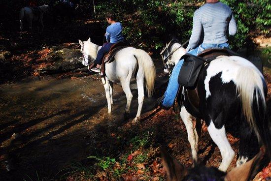 Hico, Virginia Barat: going through a stream