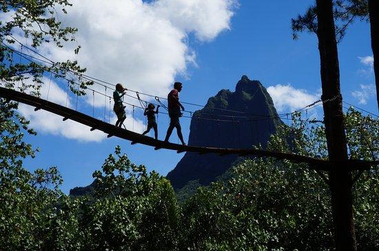 Papetoai, Polinesia Prancis: Balade en famille sur les passerelles de canopée