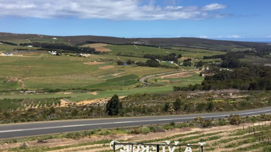 Hermanus, Republika Południowej Afryki: The wine valley