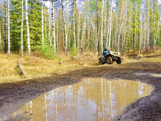 Bragg Creek, Canadá: photo4.jpg