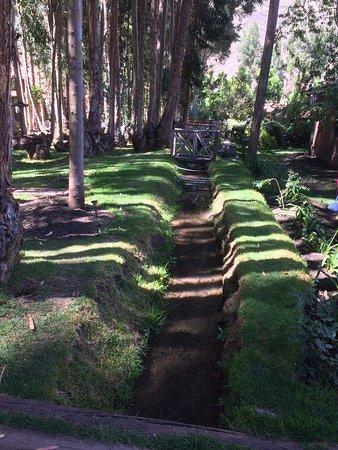 Melissa Wasi : The beautiful grounds