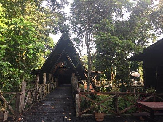 Bilde fra Kinabatangan District