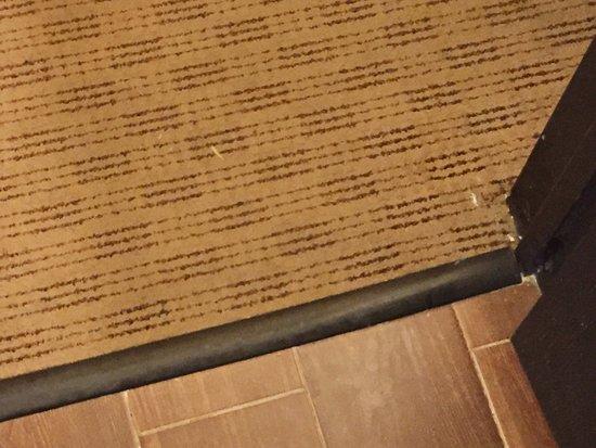 Covington, VA: Unswept floors