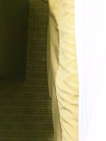 Covington, VA: Dirty crud on floor by the bed