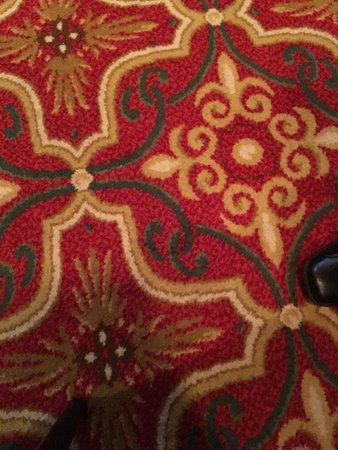 休斯頓俱樂部溫泉飯店照片