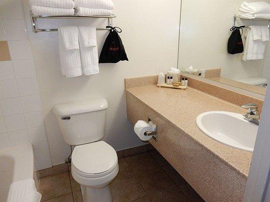 Sawridge Inn And Conference Centre Jasper Sparkling Clean Bathroom