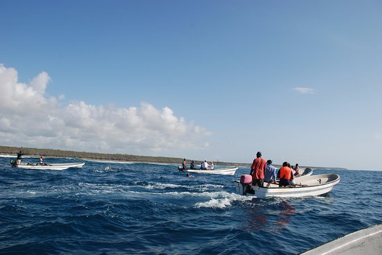Makunduchi, Tanzania: סירות בעקבות הדולפינים