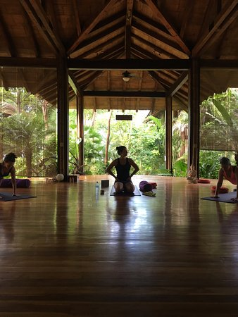 Pranamar Villas and Yoga Retreat: Fabulous yoga studio overlooking the pool (can see the ocean when the garden is not as dense)