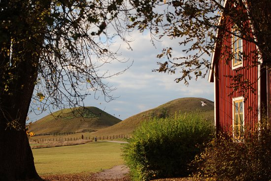 Upsala, Suecia: The burial mounds from the church