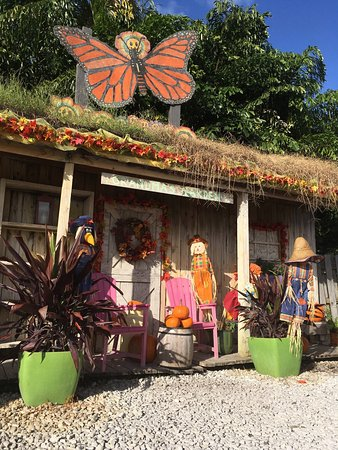 Erfly Pavilion At Flamingo Road Nursery Photo