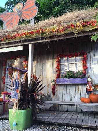 Erfly Pavilion At Flamingo Road Nursery Cute Place For Pumpkin Patch