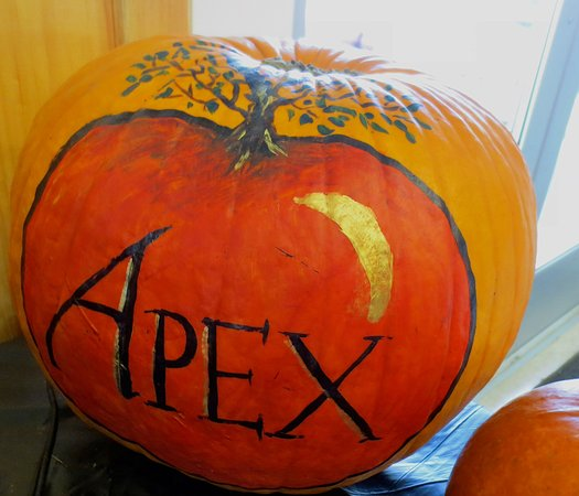 Shelburne Falls, MA: Apex is a great place