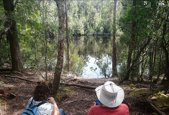 Dover, Australia: Duck Hole Lake Walk