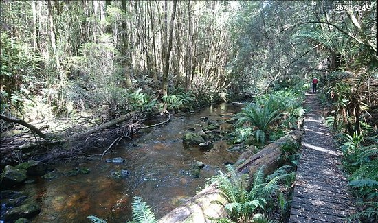 Dover, Australien: Duck Hole Lake Walk