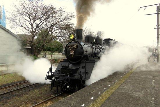 Tochigi Prefecture, Japonya: C12-66 leaving