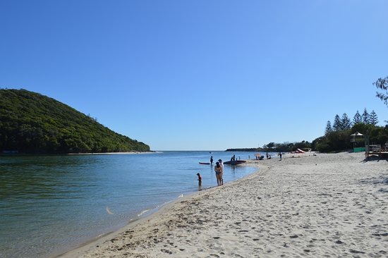 Tallebudgera Creek Tourist Park: Tallebudgera Creek safe swimming beach area with resident Life Guards - Swim Between the Flags!