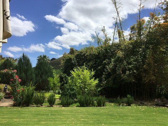 Robertson, Sudáfrica: View towards the herb garden from a pool lounger.