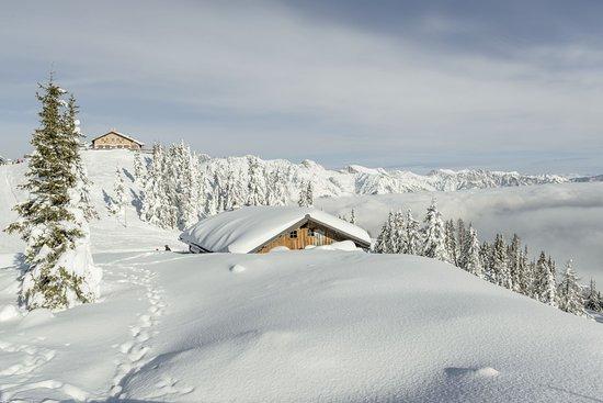 Austria: Hochwurzenalm na szczycie Planai, Schladming-Dachstein, Styria Fot. Österreich Werbung, Peter Bu