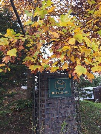 Hotele Kami-machi