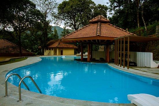 swimming pool picture of the tamara coorg yavakapadi village tripadvisor