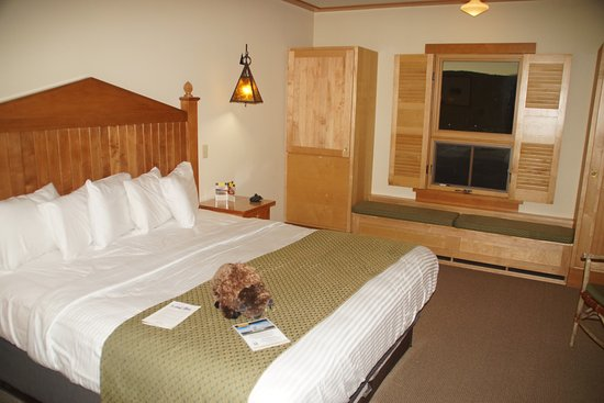 Old Faithful Snow Lodge and Cabins: Room 2008