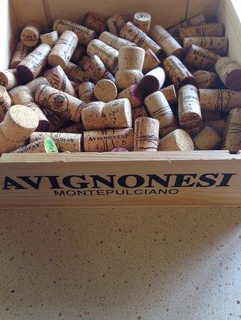 Weingut Avignonesi: photo1.jpg