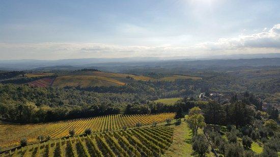 Gaiole in Chianti, Italy: Panorama