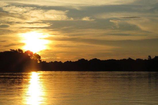 Wildlife Pantanal Tours