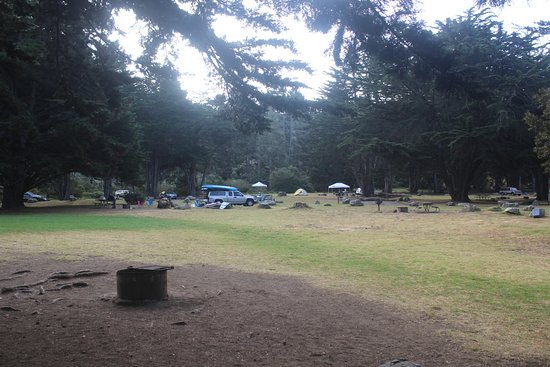 Plaskett Creek Campground: view of campground