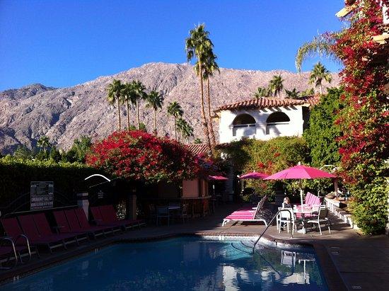BEST WESTERN PLUS Las Brisas Hotel: Aussicht vom Pool