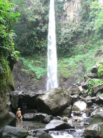 Delices, Dominica: the famous Victoria Falls