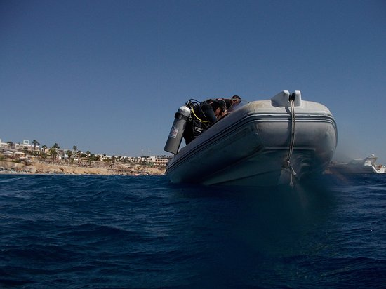 Sinai Dive Club: Diving from the boat