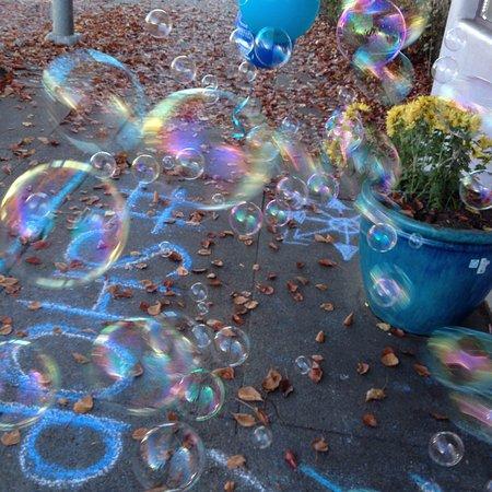 Willits, CA: WE LOVE BUBBLES
