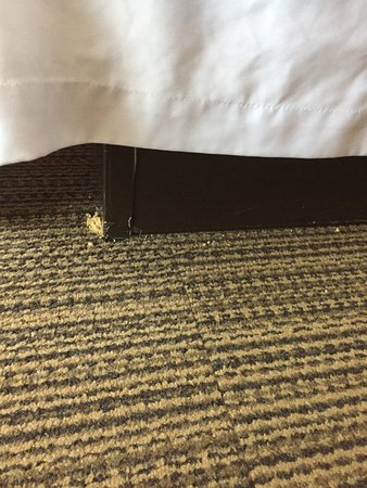 Four Points by Sheraton College Station: photo0.jpg