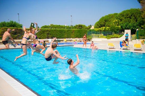 Village vacances lo solehau avec piscine foto de village for Village vacances piscine