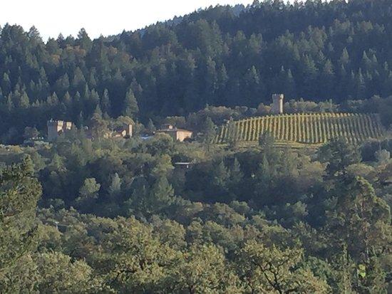Sterling Vineyards: photo3.jpg