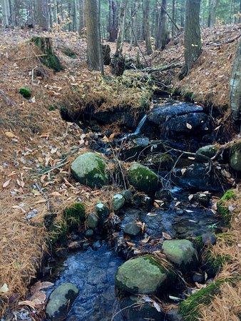 Lyons Falls, NY: photo3.jpg