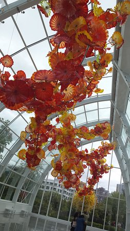 Chihuly Garden And Glass: A Hanging Glass Sculpture
