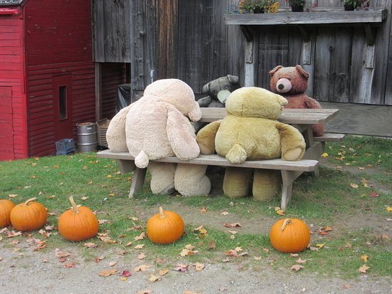 Mendon, VT: Bears dining al fresco at SUGAR & SPICE