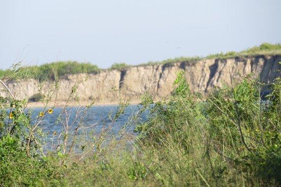 Port Aransas Nature Preserve at Charlie's Pasture