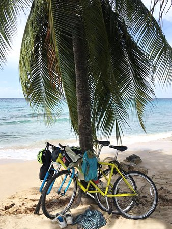 Bike Caribbean - Barbados, West Indies